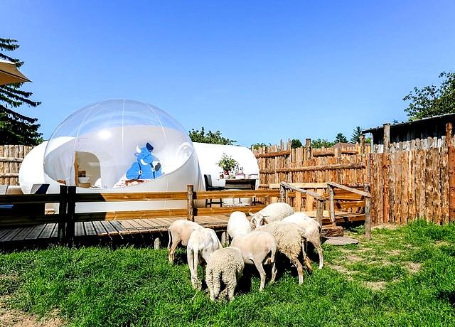 dormir dans une bulle ferme vitoz proche lyon