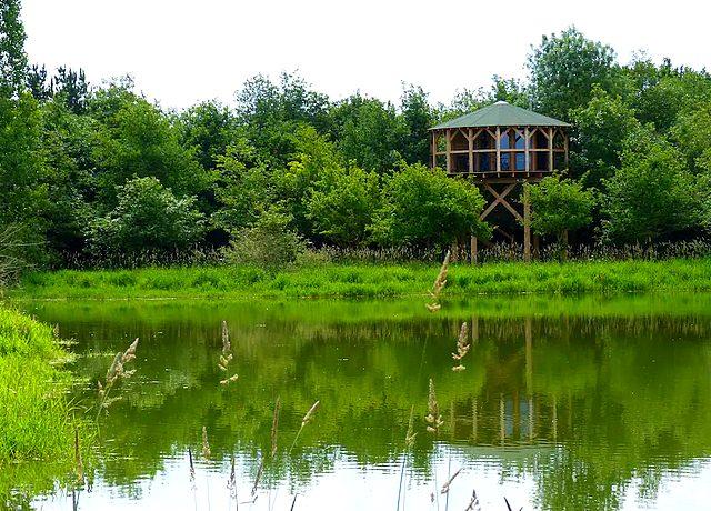 Dormir dans une cabane dans les arbres à Nantes au Repaire du Hibou